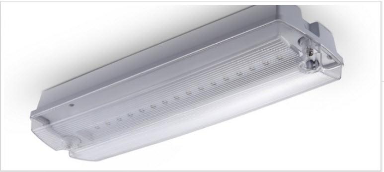 3W 16 LEDS - NOOD VERLICHTING