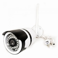 1080P IP Indoor & Outdoor Camera